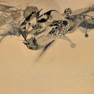 """""""Amor"""". Lápiz. 33.50 x 48.50 cm. 1986"""