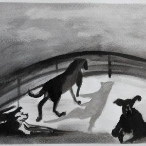 """""""Perros del Tigre"""". Aguada. Salida Especial Tigre. Sept. 2018"""